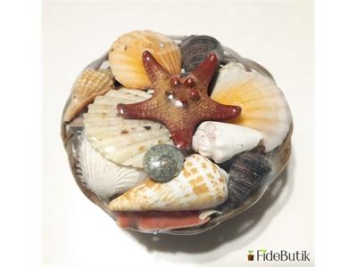 Deniz Kabuğu Sepeti