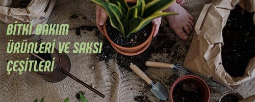 Bitki Bakım Ürünleri ve Saksılar